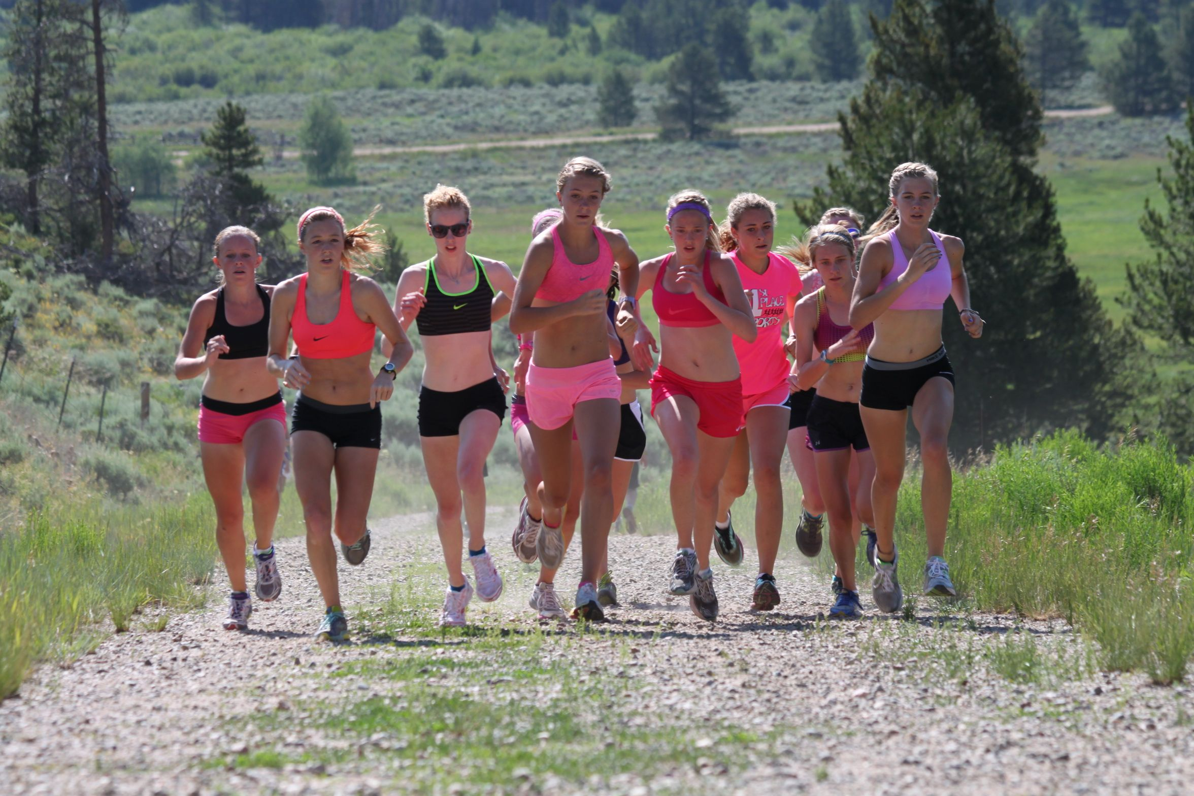 Spring and Summer Track and Training Program